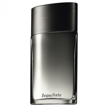 Ermenegildo Zegna Zegne Forte 100 ml