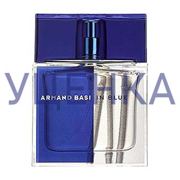 Armand Basi In Blue 110 ml