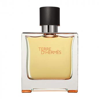 Hermes Terre D'Hermes Tester 100 ml